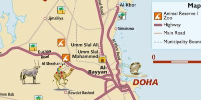 Doha On The World Map on